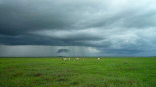 Prognoza pogody na dziś: przeważnie pogodnie, miejscami burzowo