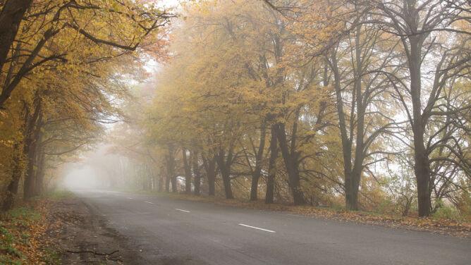 Poranne mgły dokuczą kierowcom