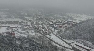 Zima w Chinach, pandy zachwycone śniegiem